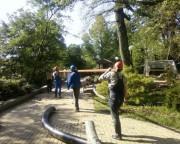 Сочи, Бочаров ручей. Июнь 2011 года.