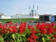 г. Казань. Август 2008 года.
